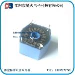 精密电流型电压互感器WPT-06