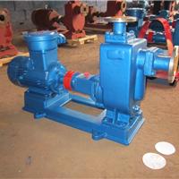 ZX100-100-20自吸泵