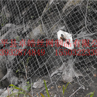 GQS绞索网,SPIDER螺旋网,蜘蛛网,S250