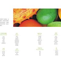 广州九和环保科技有限公司