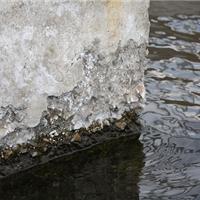 供应混凝土冻融修复混凝土碳化修复
