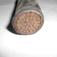 国标DL-BLV低烟低卤电线一米价格