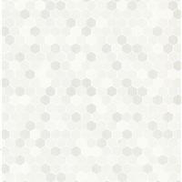 内墙砖―300X450mm XAL34011