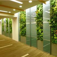 供应成都绿化墙,成都垂直绿墙