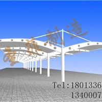 盐城汽车棚-膜结构车棚|追求卓越 业精于专