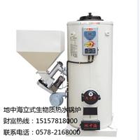 供应立式全自动生物质热水锅炉