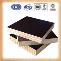 廊坊覆膜建筑模板生产商供应黑/棕膜板