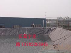 供应养猪场沼液池猪场污水处理防渗膜土工膜