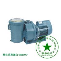 爱克游泳池设备过滤循环水泵按摩泵AP系列
