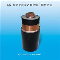 金环宇电线电缆 品种全质量优 YJV5*50mm2