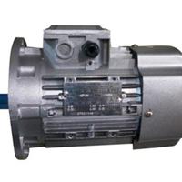 湖南 单相双值电容电机,林普机电十年品质