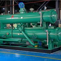 供应循环螺杆膨胀发电站