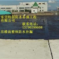 东莞市寮步防水补漏公司
