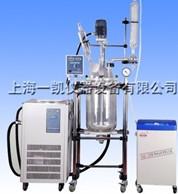 高品质玻璃反应器