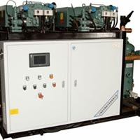 供应BBLG系列半封闭低温螺杆冷凝机组