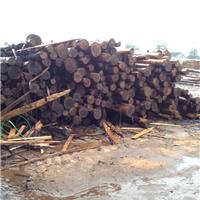 日本杉木 柳杉 香杉进口板材 一手货源