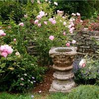 供应武汉别墅私家花园英式花园设计建造
