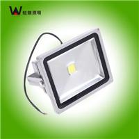 供应深圳蛙眼照明LED投光灯10W