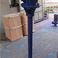 NL100-16长轴污水泥浆泵