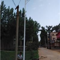 洛阳太阳能路灯,新农村太阳能路灯照明首选