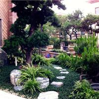 供应武汉别墅私家花园设计与建造一体化服务