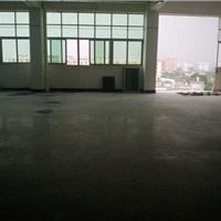 供应广州增城水泥地硬化操作方案