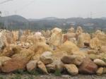 浈江区良好园林奇石场