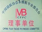 中国模板协会木模版专业委员会理事单位