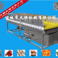 供应土豆清洗机