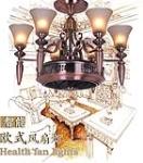 中山市皇津灯饰照明有限公司