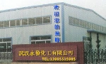 武汉永�l化工有限公司