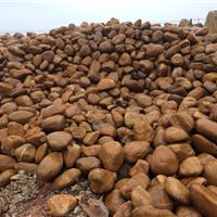 供应大量批发鹅卵石、草地石、假山公园石