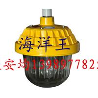 海洋王正品供应BPC8720防爆平台灯