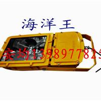 供应深圳海洋王BFC8110防爆泛光灯
