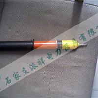 棒状伸缩式验电器 高压验电器分类及规格