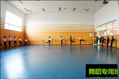 舞蹈用地胶 舞蹈专用地胶
