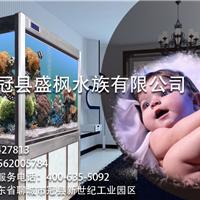 2014新型行业品牌水族箱招商