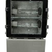 供应NFC9178固态免维护顶灯