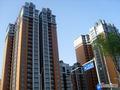 上海汇易化学建材有限公司