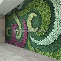 明筑生产厂家招商直销高品质仿真植物墙装饰仿真度最好的装饰材料