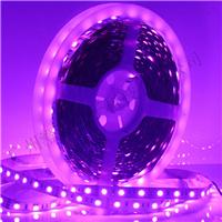 供应灯带|软灯带|柔性灯带|5050灯带