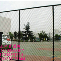供应手球厂围网 体育场防护网 体育场护栏网