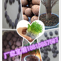 广州最便宜的陶粒价格批发建筑陶粒回填陶粒