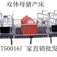 母猪限位栏产床仔猪保育床西环养猪设备总厂