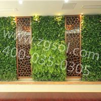 14年专注墙体绿化容器提供植物墙全程服务