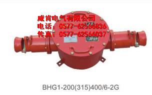 BHG1-400/6-2G