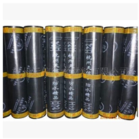 供应SBS聚酯胎改性沥青防水卷材