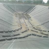 垃圾场渗滤液调节池防臭气盖专用防臭膜