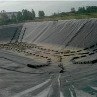 供应垃圾场调节池浮盖专用HDPE防水板