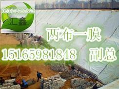 汇鑫土工膜厂家供应土工膜化肥厂防渗处理废料